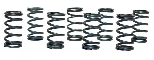 Racing Single Valve Springs